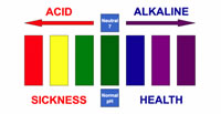 acid-alkaline scale